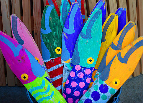Colorful fish by Lorena Mahoney