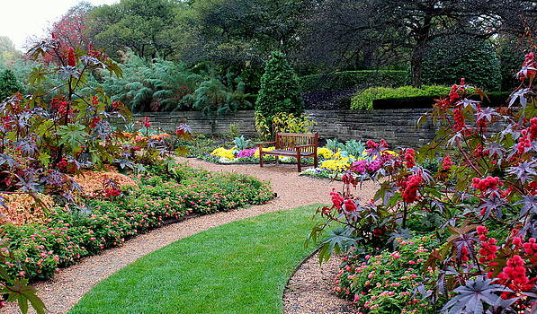 Rosanne Jordan - Colorful Garden Delights