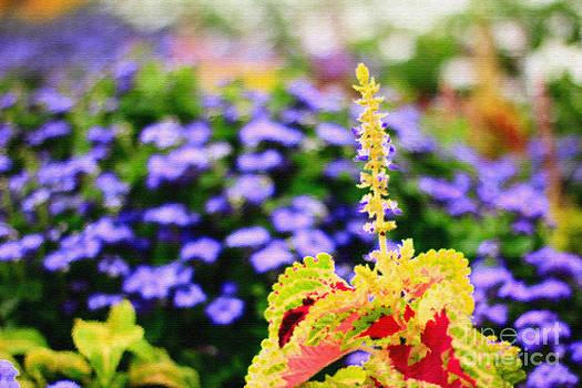 Beverly Claire Kaiya - Colorful Garden Scene