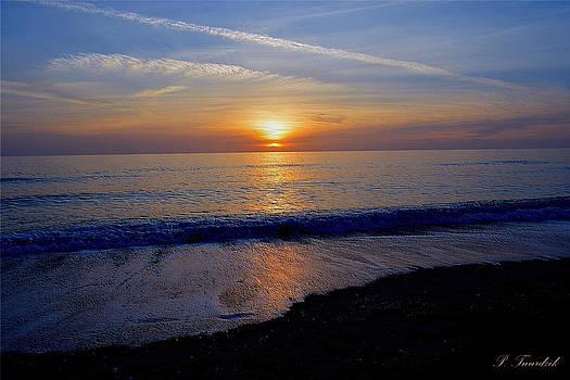 Patricia Twardzik - Colorful Gulf Coast Sunset