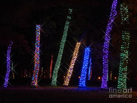 Christine Stack - Colorful Holiday Lights at Longwood Gardens in Kennett Square Pennsylvania