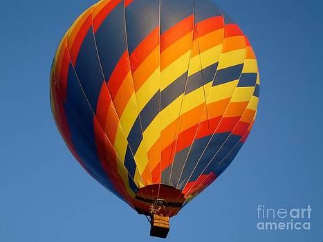 Danielle Groenen - Colorful Hot Air Balloon