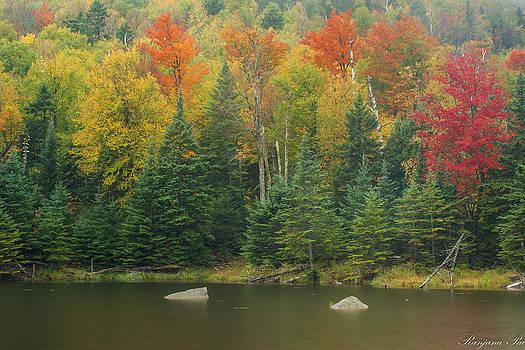 Colorful Lake by Ranjana Pai