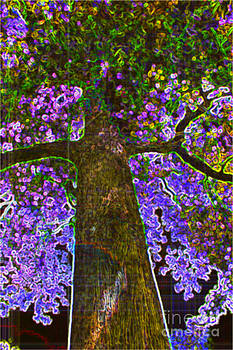 Colorful MapleTree Abstract by Judy Palkimas