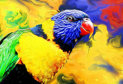 Colorful Parrot by Brandon Batie