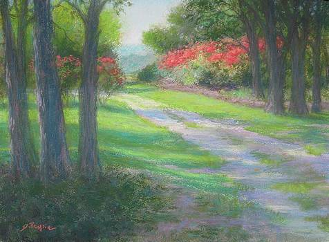 Colorful Pathway by Michael Gillespie