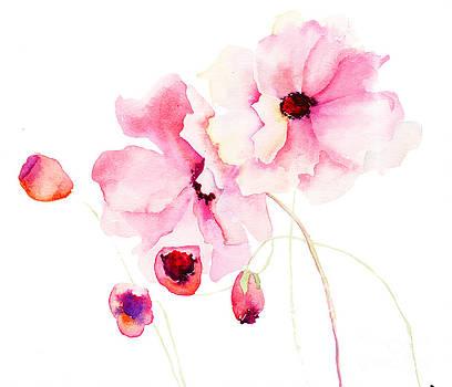 Colorful pink flowers by Regina Jershova