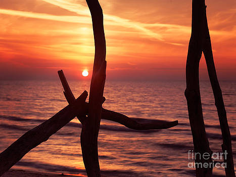 Colorful red sunset behind driftwood sculpture by Oleksiy Maksymenko