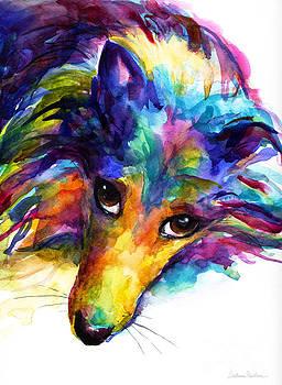 Svetlana Novikova - Colorful Sheltie Dog portrait