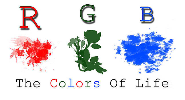 Colors Of Life R.G.B. by Evewin Lakra