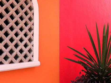 Julie Palencia - Colors of Mahahual