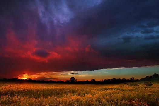 Summer Spectacular by Rob Blair