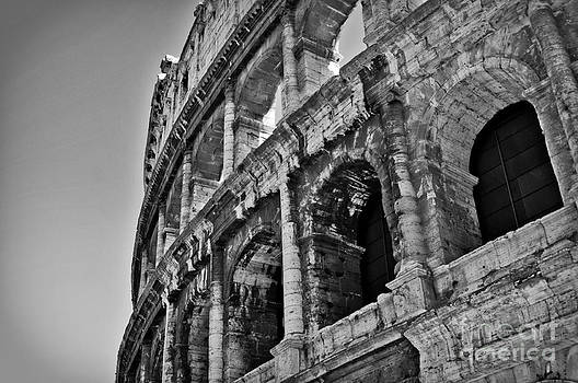 Colosseum by Jaymes Williams