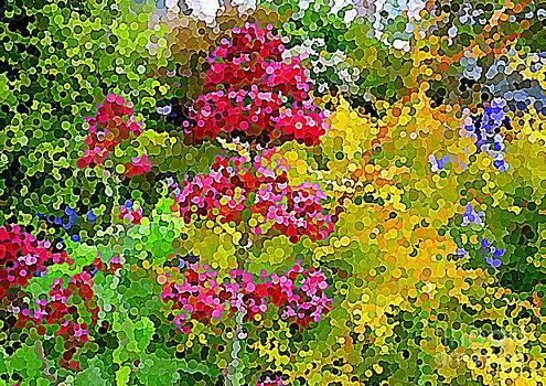 Bishopston Fine Art - Coloured Dots in Nature