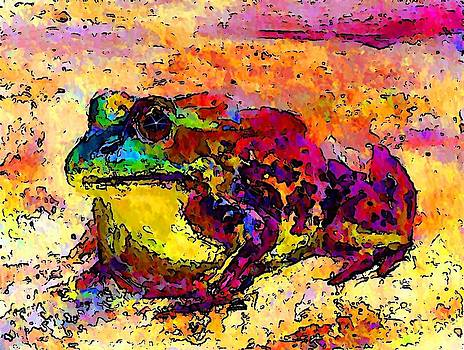 Colourful Frog by Stanley  Funk
