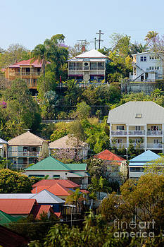 David Hill - Colourful Queenslander houses on a steep hillside