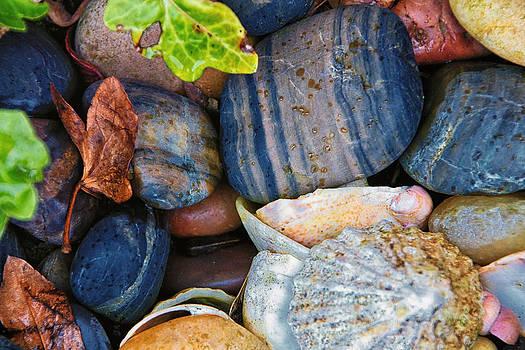 David Pringle - Colourful Stones
