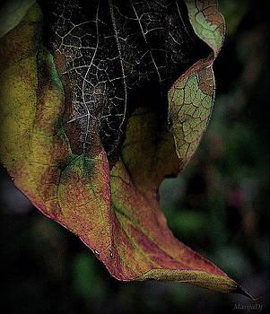 Colouring by Marija Djedovic