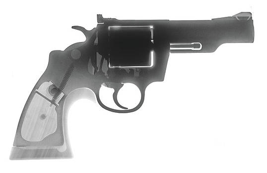 Colt 357 Magnum X Ray Photograph by Ray Gunz
