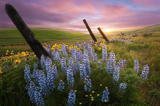 Columbia Hills Sunset by Andrew Kumler