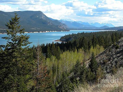 Stuart Turnbull - Columbia lake 2