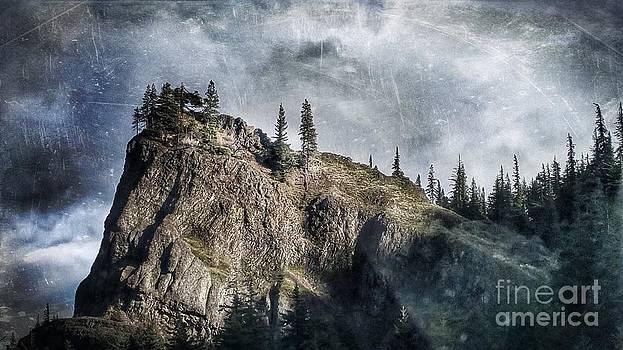 Lynn Palmer - Columbia River Rocky Outcropping