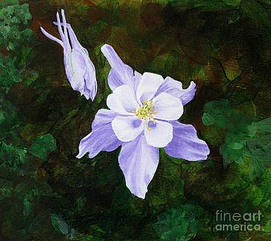 Columbine by Shirley Miller