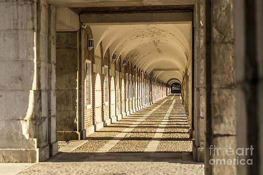 Columns In Aranjuez by Stefano Piccini