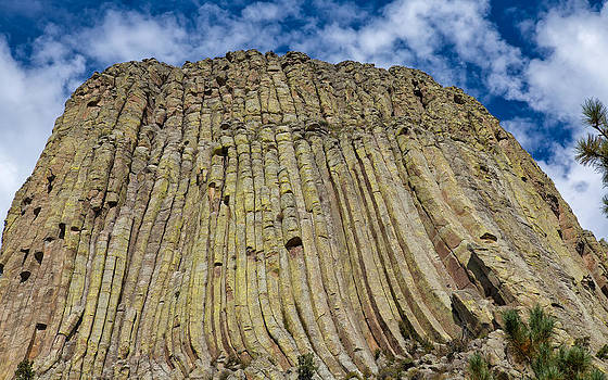Columns of Devils Tower by John M Bailey