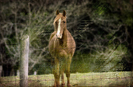 Come To Me by Kathy Jennings
