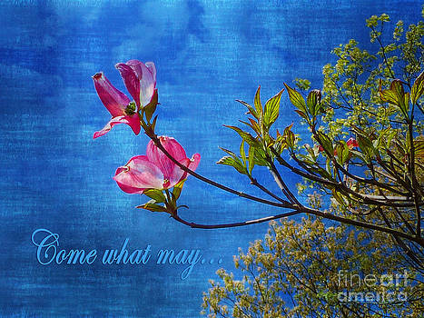 Dee Flouton - Come What May