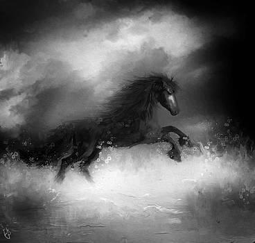 Comes a dark horse by Hazel Billingsley