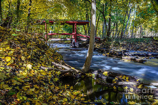 Commerce Twp. Mill Race Park by Patrick Shupert