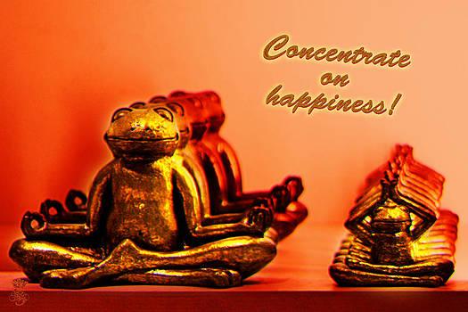 Concentrate on Happiness by Li   van Saathoff