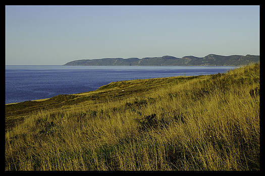 Conception bay by Vincent Dwyer