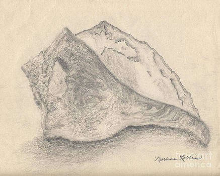 Conch Shell by Marlene Robbins