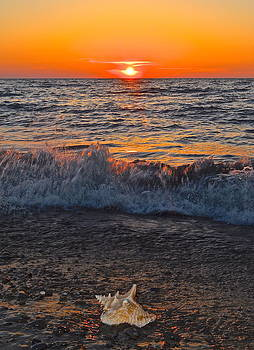Frozen in Time Fine Art Photography - Conch Shell Sunset
