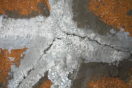 Concrete Evidence by Ross Odom