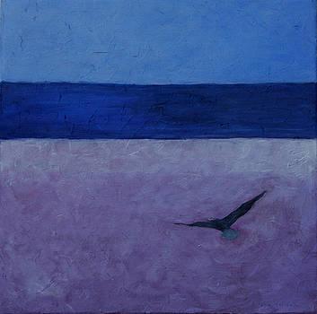 Condor by Victoria Sheridan