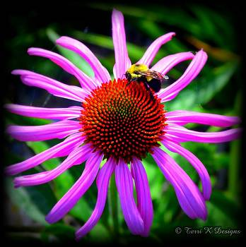 Cone with bee by Terri K Designs