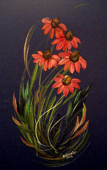Coneflower by Dorothy Maier