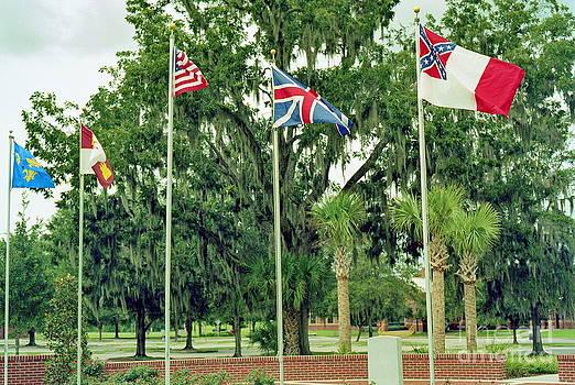 Wayne Nielsen - Confederate - Flags of My Ancestors