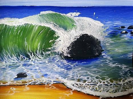 Conflicted Ocean by Stephanie Bridge