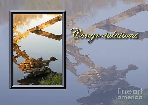 Jeanette K - Congratulations Fish
