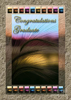 Jeanette K - Congratulations Graduate Grass Sunset