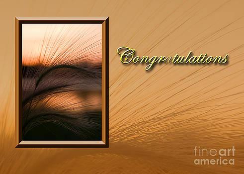 Jeanette K - Congratulations Grass Sunset