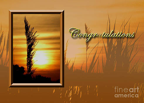 Jeanette K - Congratulations Sunset