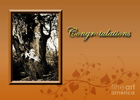 Jeanette K - Congratulations Willow Tree