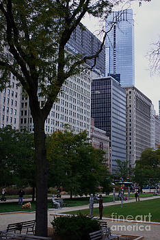 Frank J Casella - Grant Park Chicago