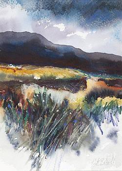 Connemara Coast I by Kate Bedell
